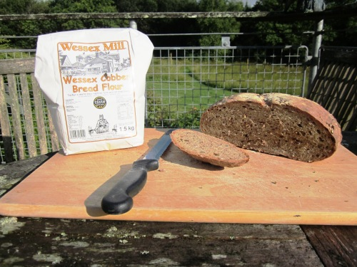 Wessex Cobber flour, with fly, and bread
