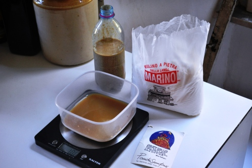 Beer barm and Mulino Marino Pan di Sempre flour