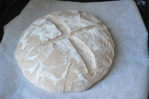 Beer barm bread, pre-bake