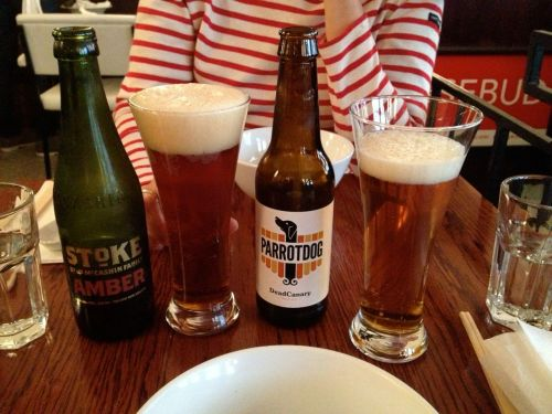 Beers in Chow, Wellington