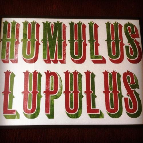 Humulus luplus letterpress, R Frost
