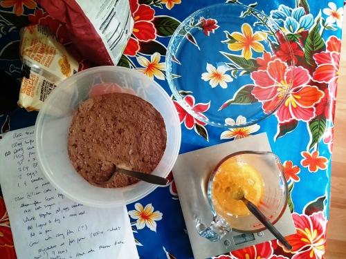 Microwave choc cake ingredients