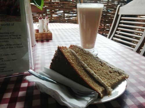 Cake and coffee at Saddlescombe
