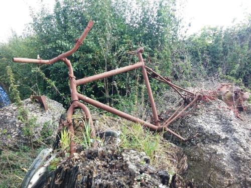 Dead bike, Gander Down