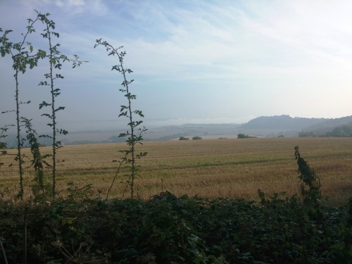 Mist in the Weald, South Downs Way