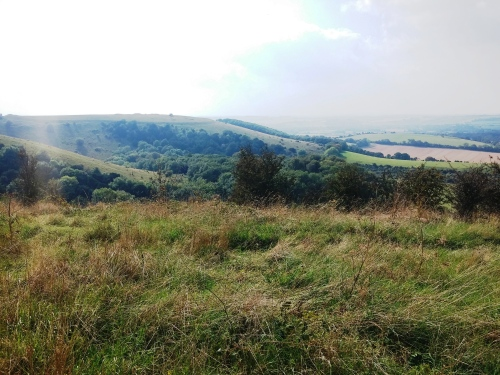 Old Winchester Hill, Iron Age hill fort