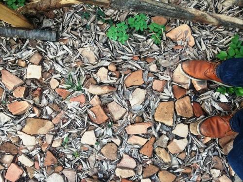 Monte Testaccio amphorae shards