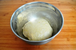 Michetta dough, first prove