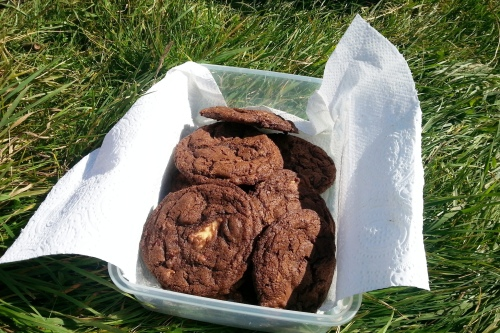 Quintuple chocolate chip cookies in Friston Forest
