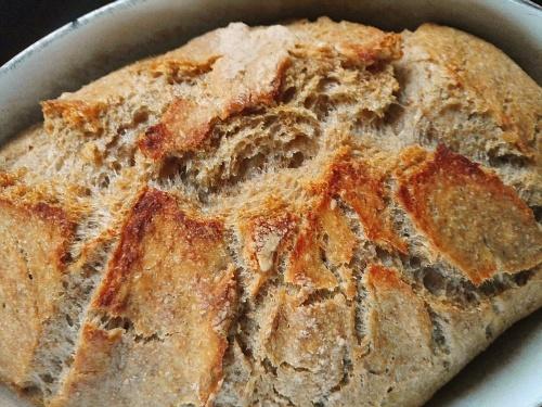 Casserole no knead loaf