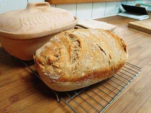 Knuspertopf no knead loaf